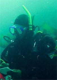 bsteg's Profile Photo
