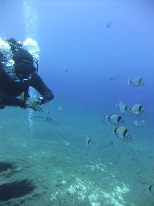 underwater me