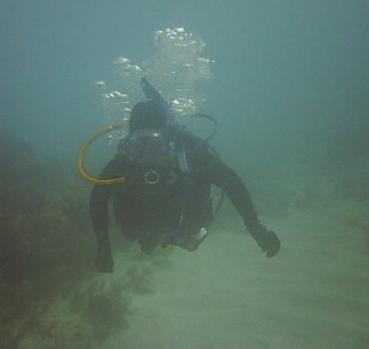 French Reef Key Largo, FL (My wife)
