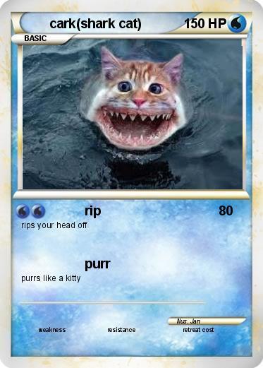 Cat Shark Pokemon Card
