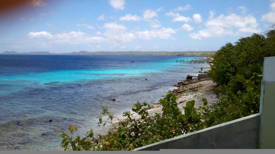 Bonaire Today!!!