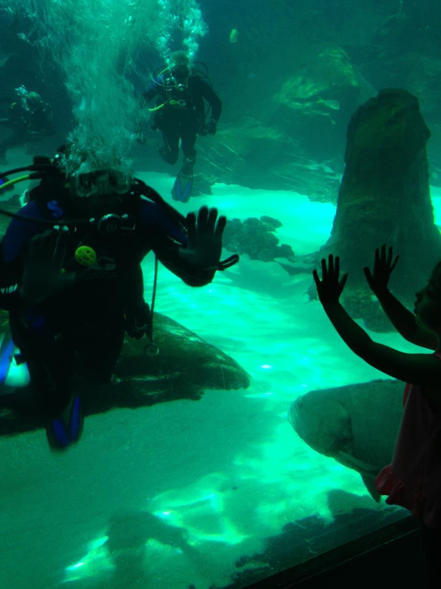 Georgia Aquarium - Me interacting with a child