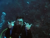 Rude Diver!