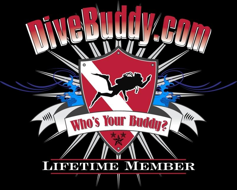 DiveBuddy.com LifeTime Member t-shirt design with more color