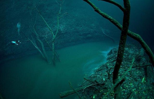 Deep Underwater River in Cenote Angelita, Mexico (hydrogen sulphide)