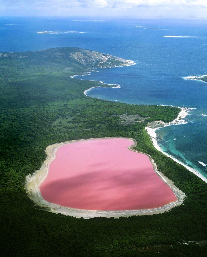 Lake Hillier (aka Pink Lake) in Recherche Archipelago, Western Australia