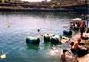 Raft race raft disaster