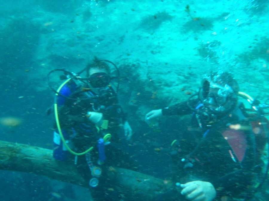 Diving Pics