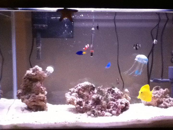 my sald water tank old picture!