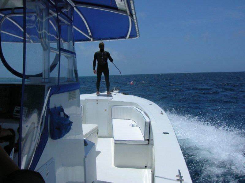 dive Turks & Caicos