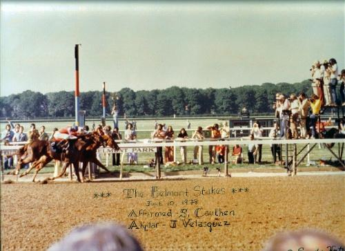 1978 Belmont Stakes Win Picture