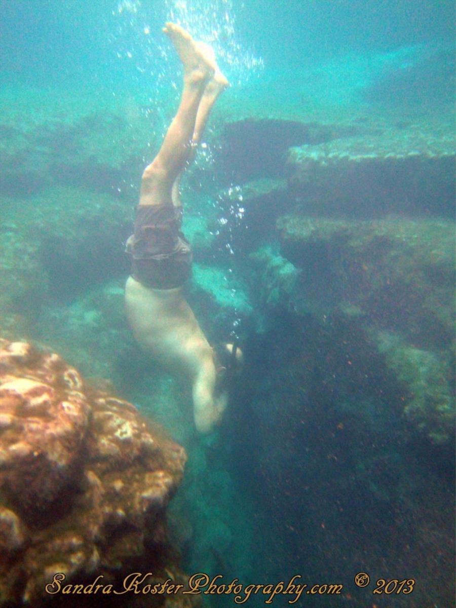Freediver 1 - 2 of 7