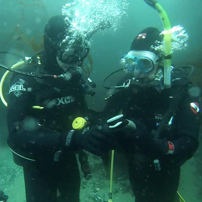 Divers Mike and Nick