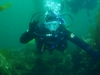 My first dive in Catalina!