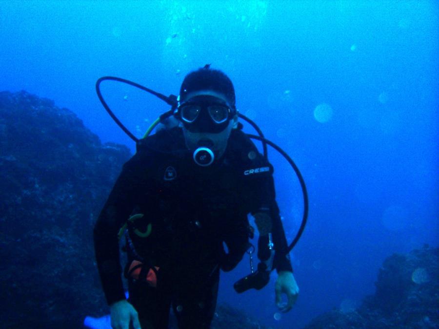 blauhimmel's Profile Photo
