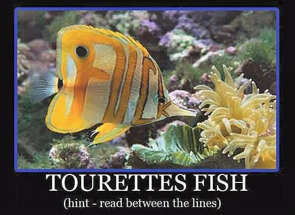 Tourettes Fish