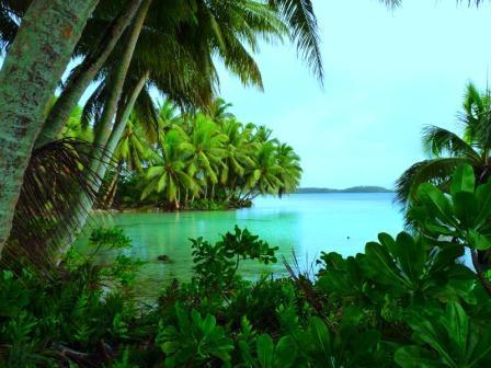 Palmyra Atoll - Strawn Island