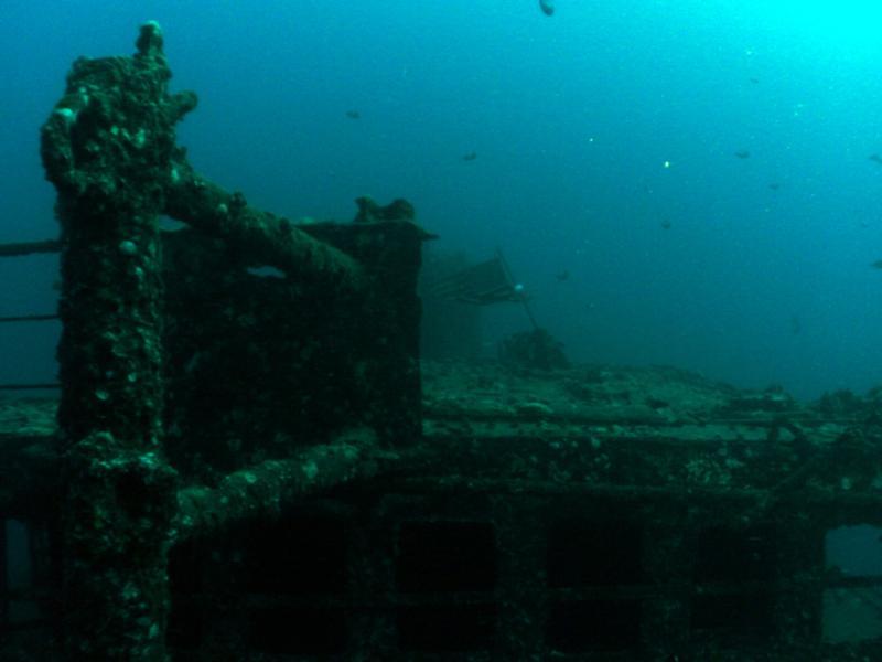 Sea Tiger, Waikiki