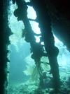 Inside USS Liberty, Tulamben