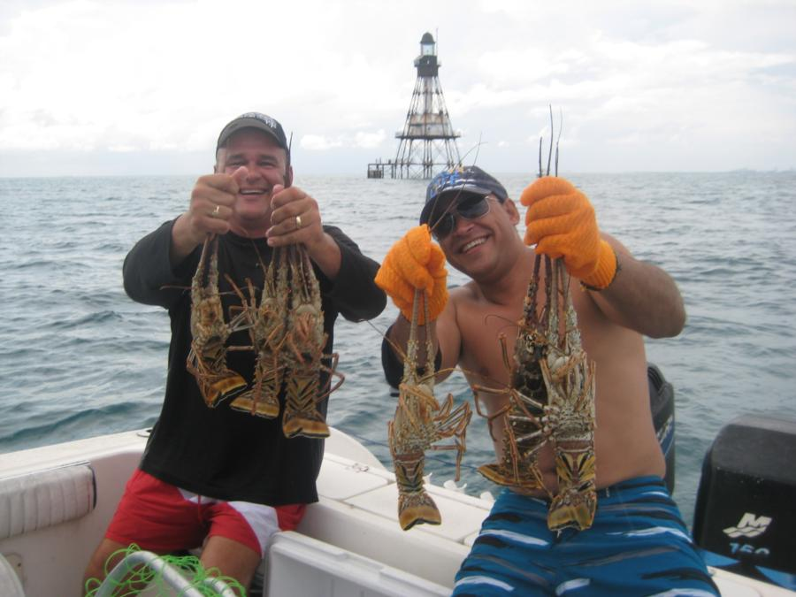 Lobster Catch of The day