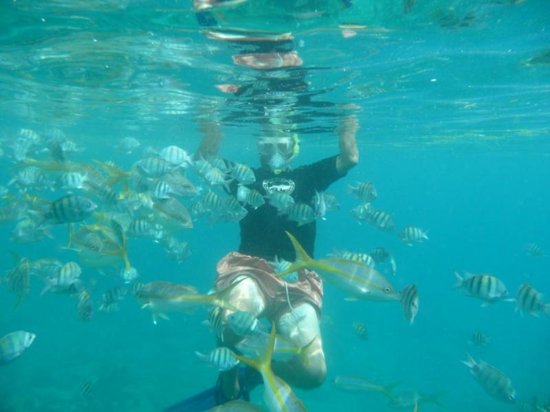 Hugh and Fish, Norman Island BVI