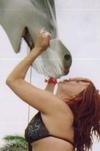 hammerhead kisses