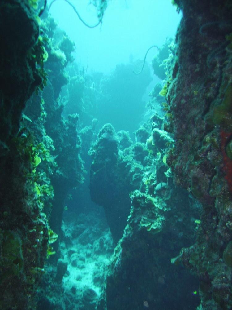 Caverns, Andros, BAHAMAS