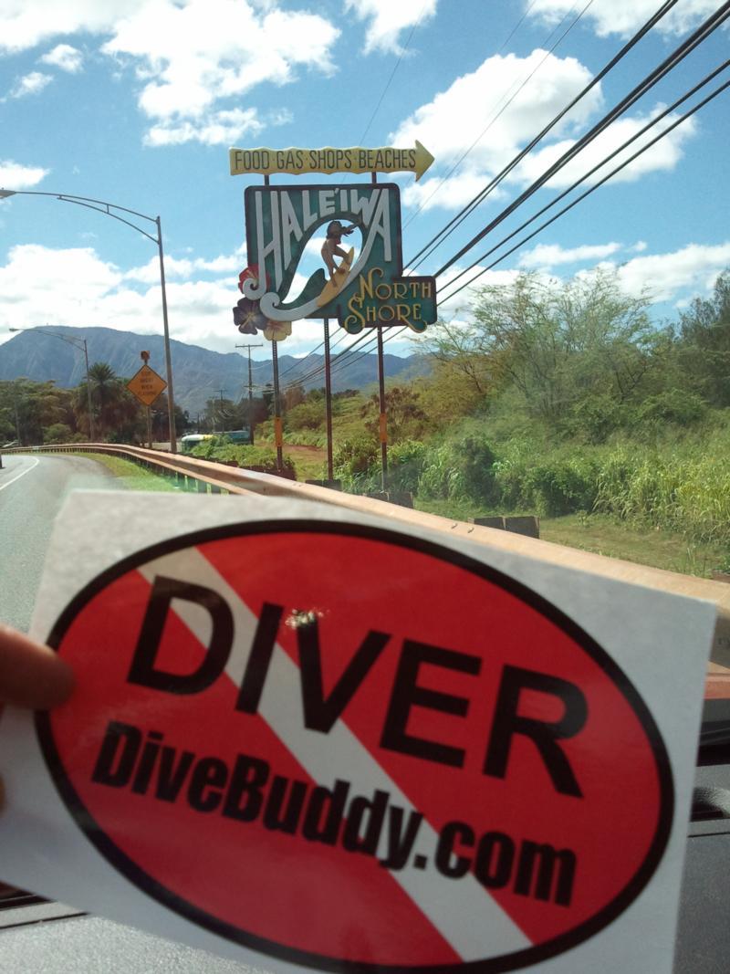DiveBuddy in Haleiwa, North Shore- HAWAII