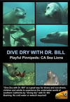My Playful Pinnipeds: California Sea Lions DVD cover