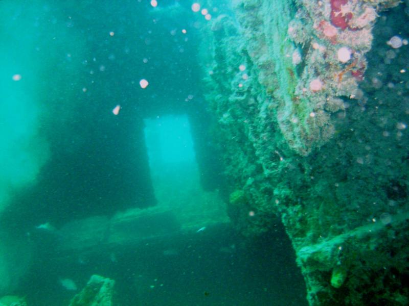 Miami wreck
