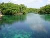 Manatee Cenote - Tankah Tres - Quinta Roo Mexico