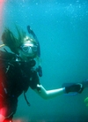 Michelle at Dania Beach Jax Dive