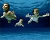 ...more dive buddies...  YAY!!!