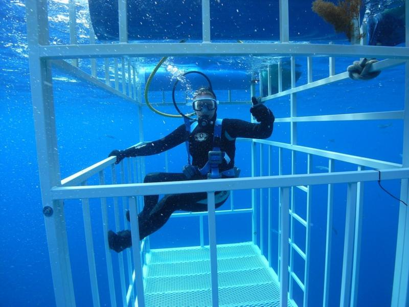 Me in the surface cage Great White - Oct 2009