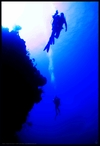 """""""The Abyss""""  Feb 2008, Grand Turk"""