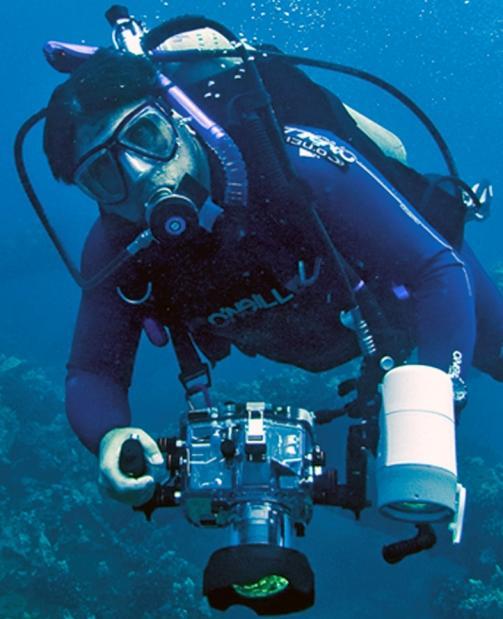 Lee Rose, Diving DP