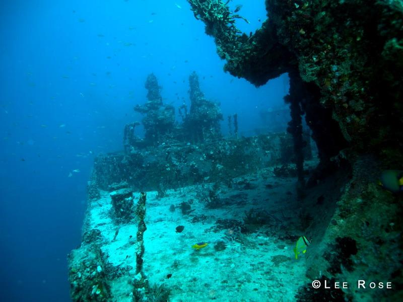 Key Largo, Spiegle Grove Wreck