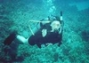 Diving in St George