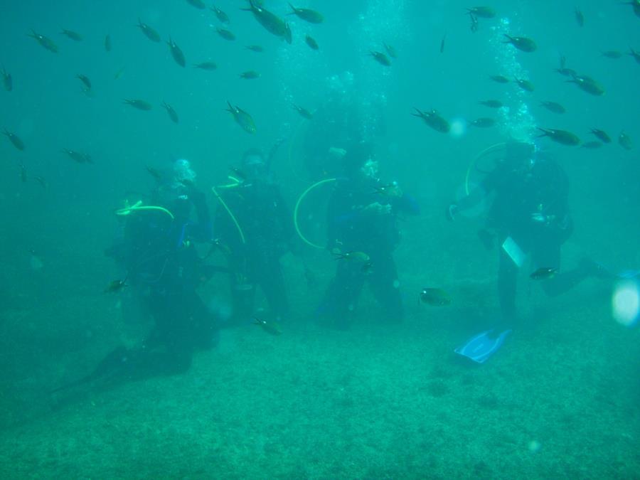 O/W certification dive in Sea of Cortez