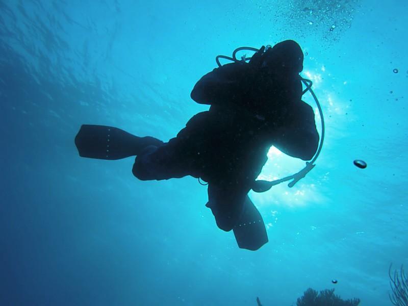 Nesher Shore Diving @ Utopia - Utila - Mar 2011