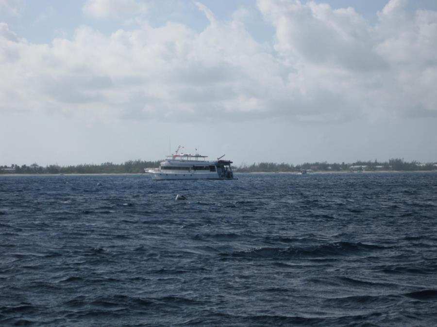 Nesher's Home Away from Home - Cayman Aggressor - 18 - 25 May 2013