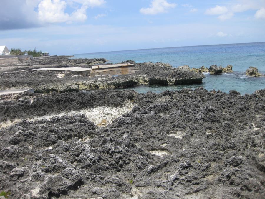 Shore Diving - MakaBuka - Grand Cayman - May 2013