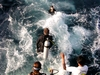 2003 - Sea Dragon MV Andaman - Dive, Dive!!!