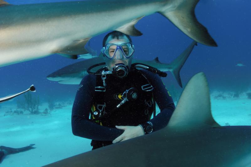 Bahamas Jul 08 - Close encounter
