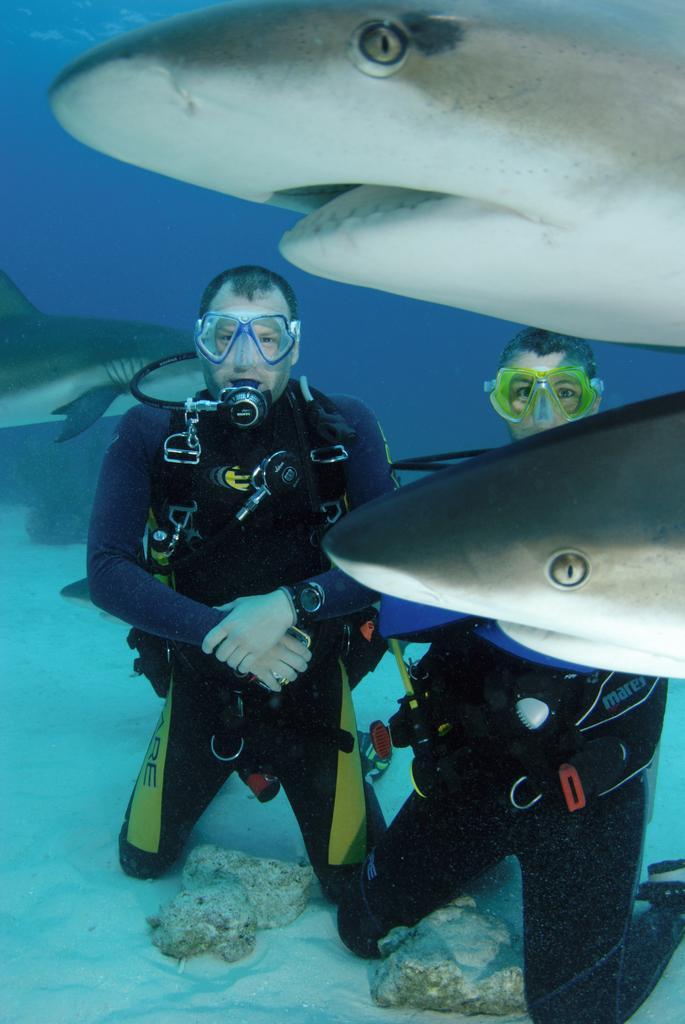 Bahamas Jul 08 - Close encounter 2