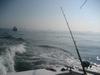 Mazatlan Fishing Trip