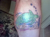 Turtle Tat