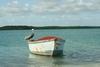 Bonaire scenery
