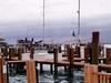 dock at Bimini island