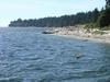 The shores of Seachelt